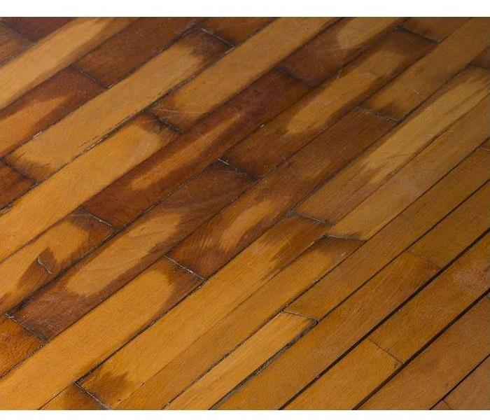 Water Damage What Does Water Damage Do To Hardwood Floors in Montgomery?